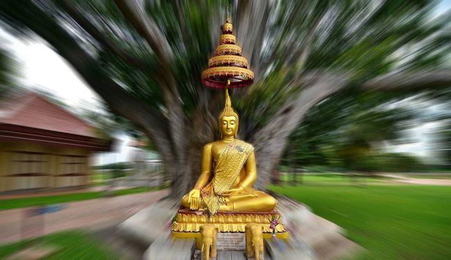 Buddha Statue Buddha Statue Thailandphoto Thailand Idol Tree Buddhism Philanthropy