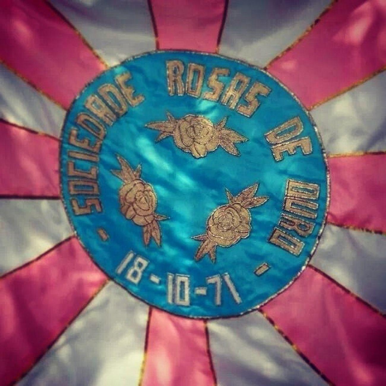 Simplesmente amo esse pavilhão. Roseira Rosasdeouro Imposs ívelnãolembrar Inesquecivel Ancioso
