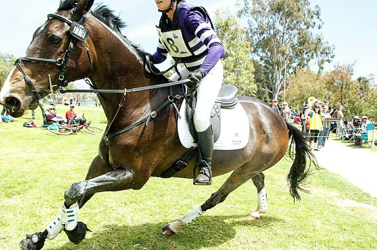 Horseback Riding Competition Grass Outdoors Horse Racing Sport Motion Sports Race Animal One Animal People Horse Jockey Domestic Animals Riding Animal Themes Equine Photography Equinephotography Equestrian Equine Equestrianlife Equestrianphotography Wide Angle Wideangle Lens Day