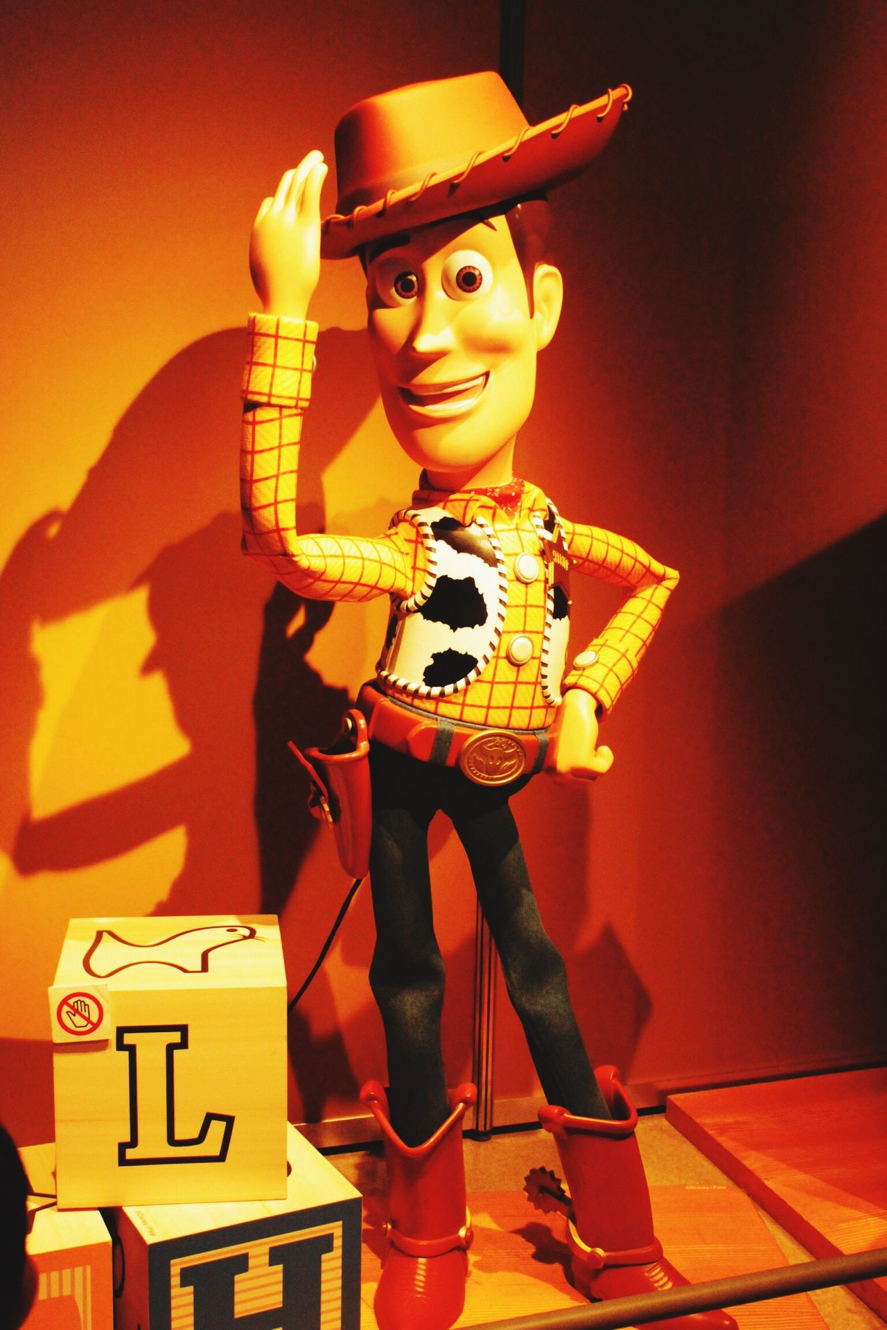 One Person Front View Full Length Holding Indoors  Human Body Part People Toystory Museum