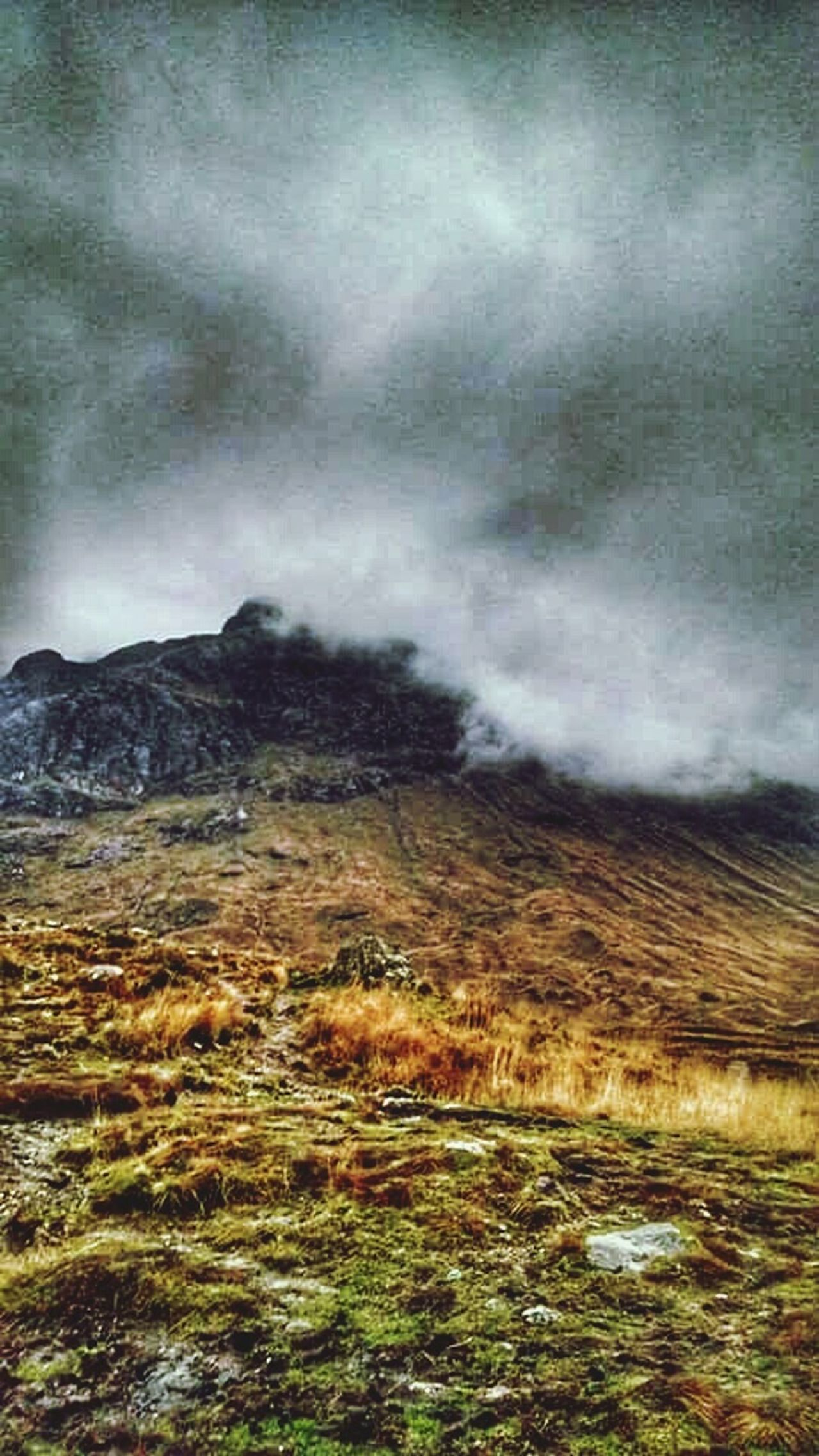 Scottish Highlands Mist