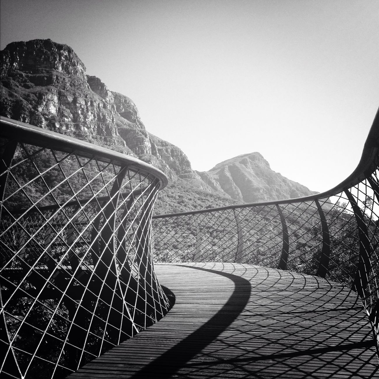 I had a beautiful run this morning and discovered the cool new Boomslang CanopyWalkway at Kirstenbosch Botanical Gardens