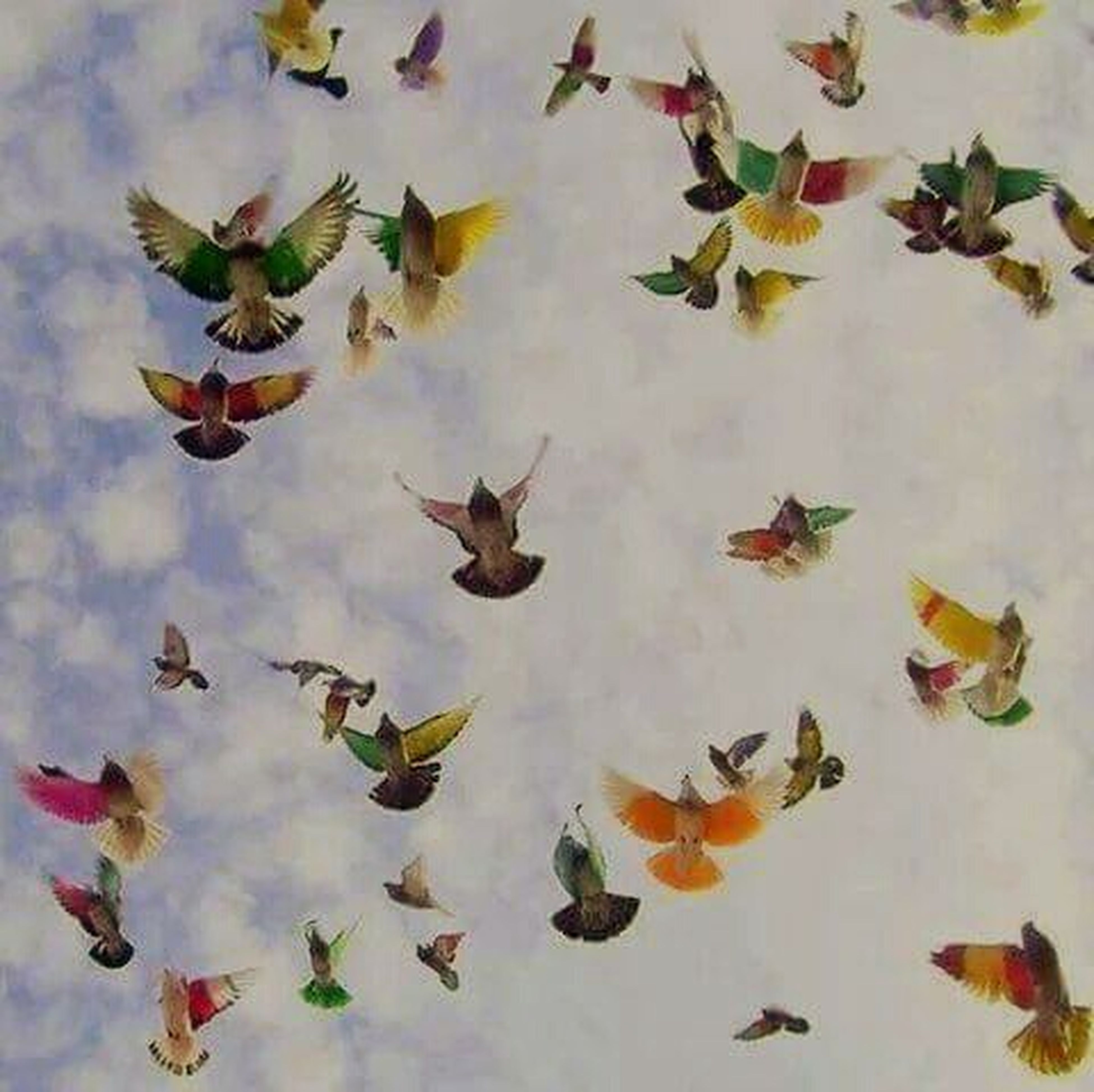 bird, animal themes, animals in the wild, flock of birds, wildlife, flying, multi colored, nature, medium group of animals, day, no people, low angle view, high angle view, outdoors, beauty in nature, abundance, variation, leaf