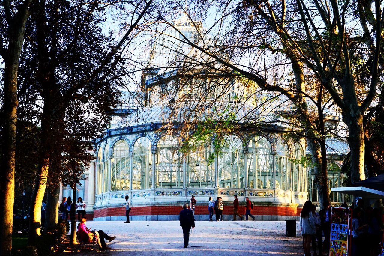 Architecture Walking Building Exterior Outdoors Nature Travel Destinations People Palacio De Cristal Madrid Spain🇪🇸 At The Park City Life Nature Scenics Beauty In Nature Exploring