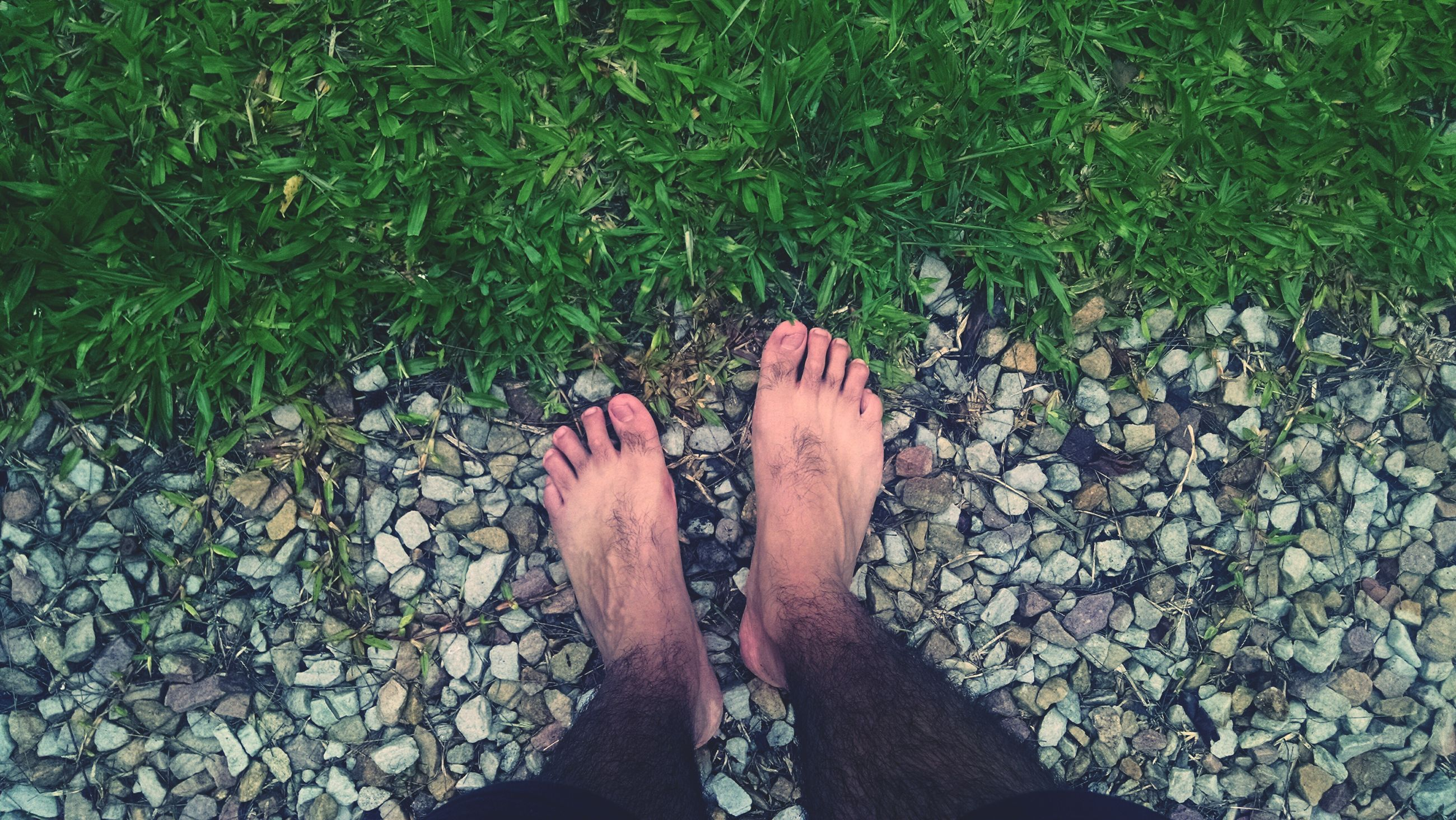 low section, person, personal perspective, human foot, lifestyles, high angle view, standing, shoe, leisure activity, barefoot, sunlight, day, unrecognizable person, outdoors, grass, footwear