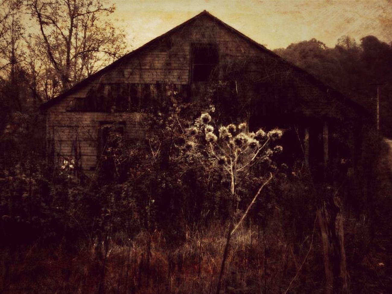 Deadplaces