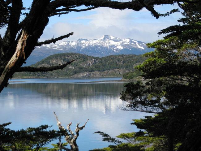 Argentina, Ushuaia, dezembro/2007 Argentina Beauty In Nature Lake Mountain Nature Scenics Tourism Tranquil Scene Tree Ushuaïa