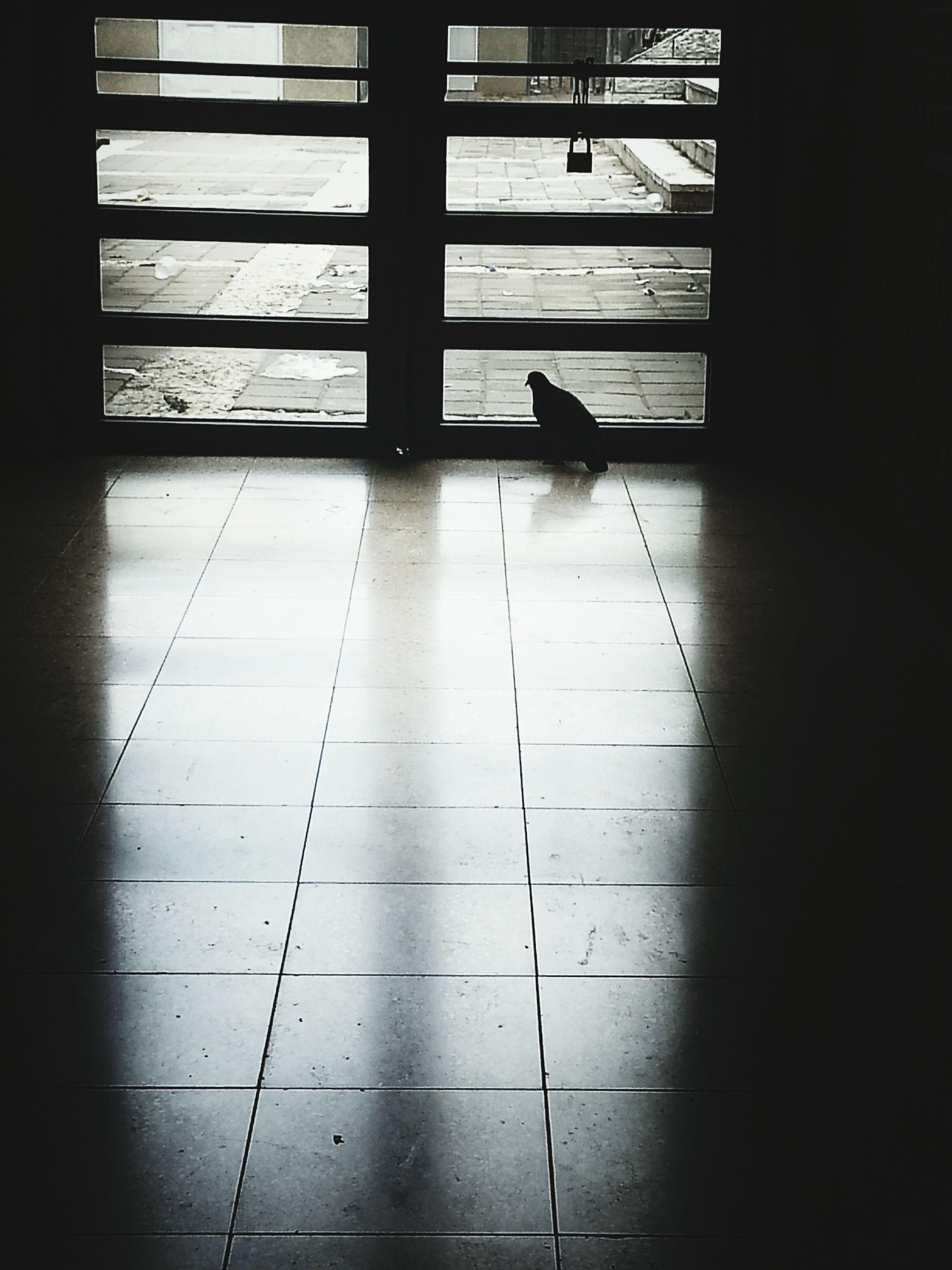 indoors, tiled floor, flooring, window, shadow, home interior, architecture, floor, sunlight, built structure, corridor, door, glass - material, tile, hardwood floor, transparent, reflection, absence, empty, auto post production filter