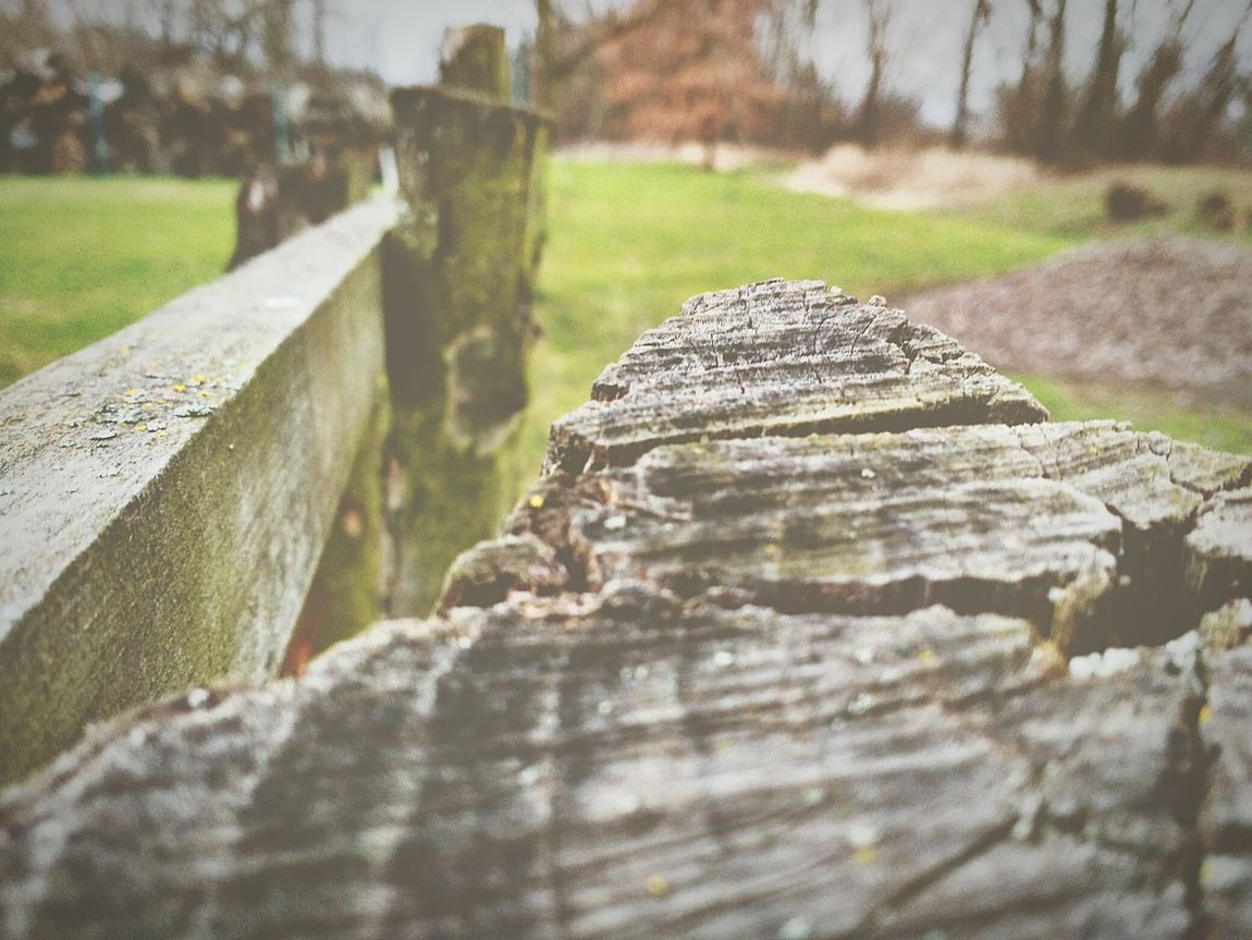 Still Image Calmness Nature Nature Photography Poetic No Movement Dramatic Design Wood Wooden Post Lovelynatureshots Poeticimage Fence The Great Outdoors With Adobe