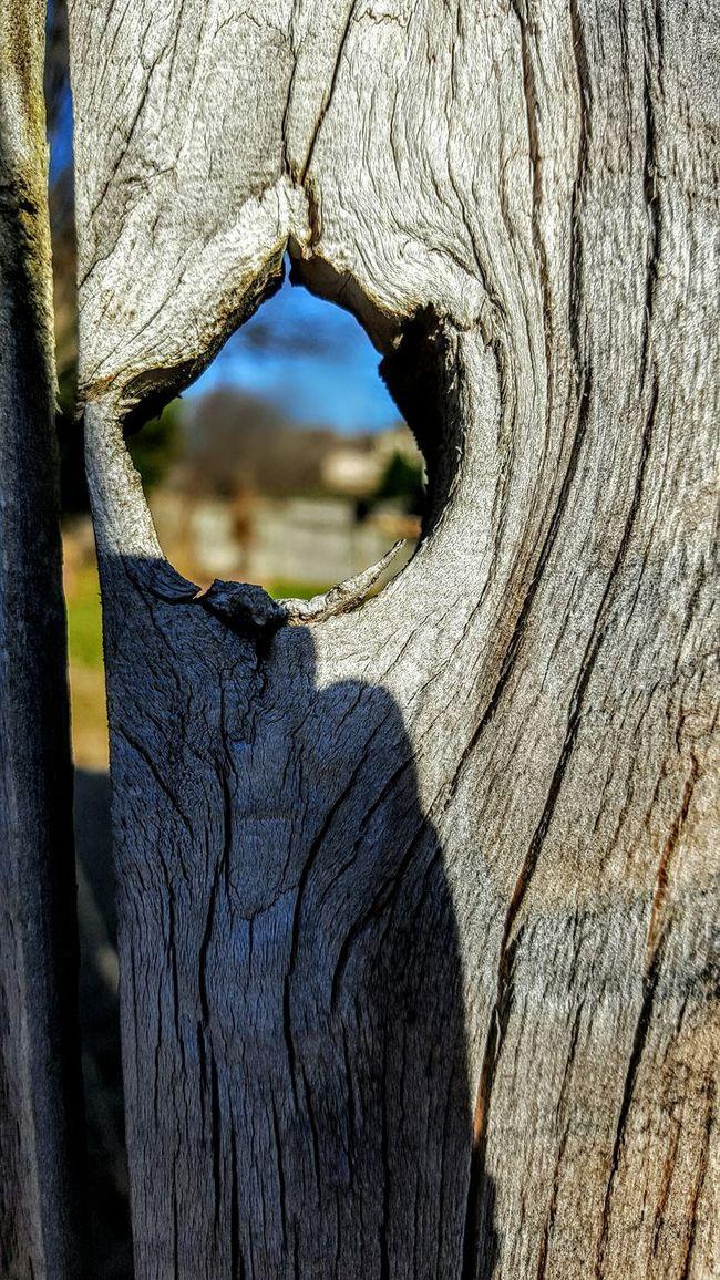 Hole In Fence Wood Fence Wood Art Fence Wood