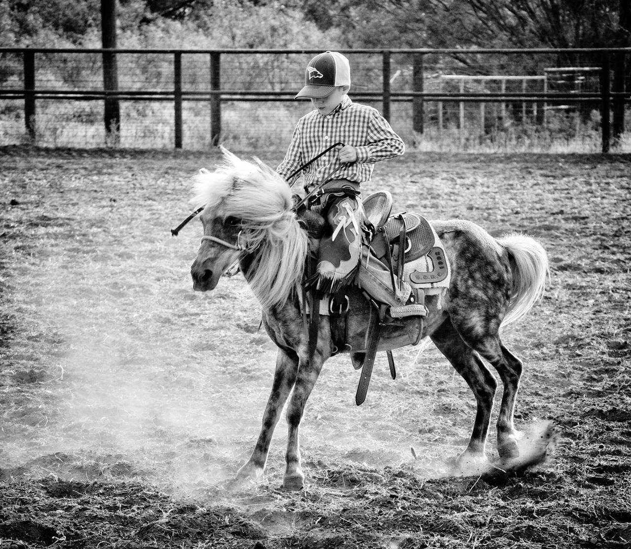 Fortheloveofblackandwhite Playday Horse Riding Black And White Collection  Blackandwhite #bnw #monochrome #instablackandwhite #monoart #insta_bw #bnw_society #bw_lover #bw_photooftheday #bw #bw_society #bw_crew #bwwednesday #insta_pick_bw #bwstyles_gf #irox_bw #igersbnw #bwstyleoftheday #monotone #monochromatic#noir #fineart_ph This Week On Eyeem Black & White Horses Nikonphotography Horse Eye4photography  Photoart Fine Art Photography Black And White Collection! Rodeo Time Bronte Texas West Texas Pony Ponies Cowboy