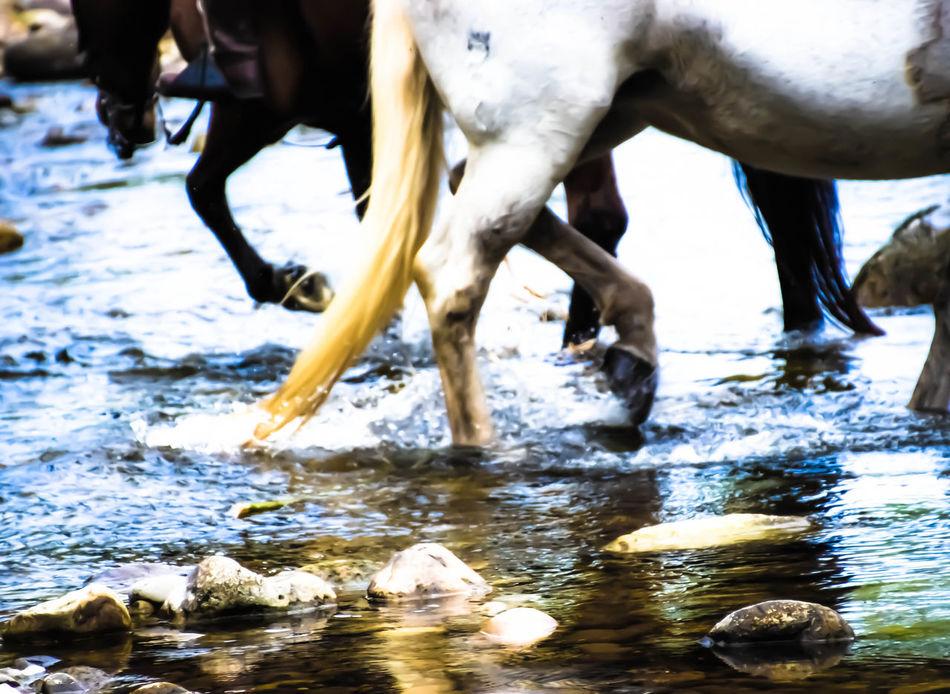 Españoles Y Sus Fotos Taking Photos Eye4photography  Somosfelices