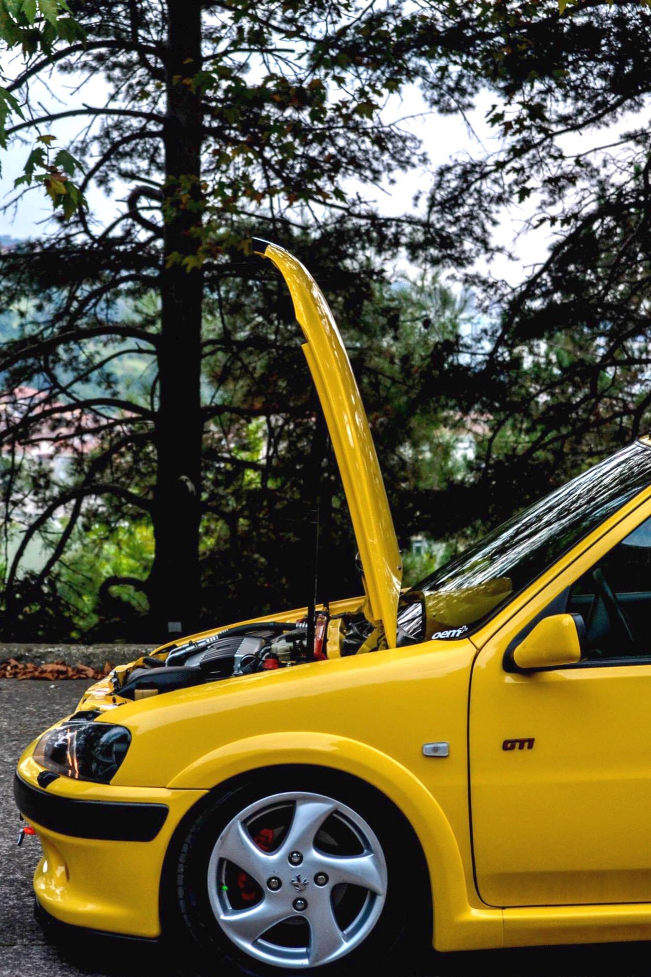 Peugeot 106gti Car Yellow Nature Society CarShow