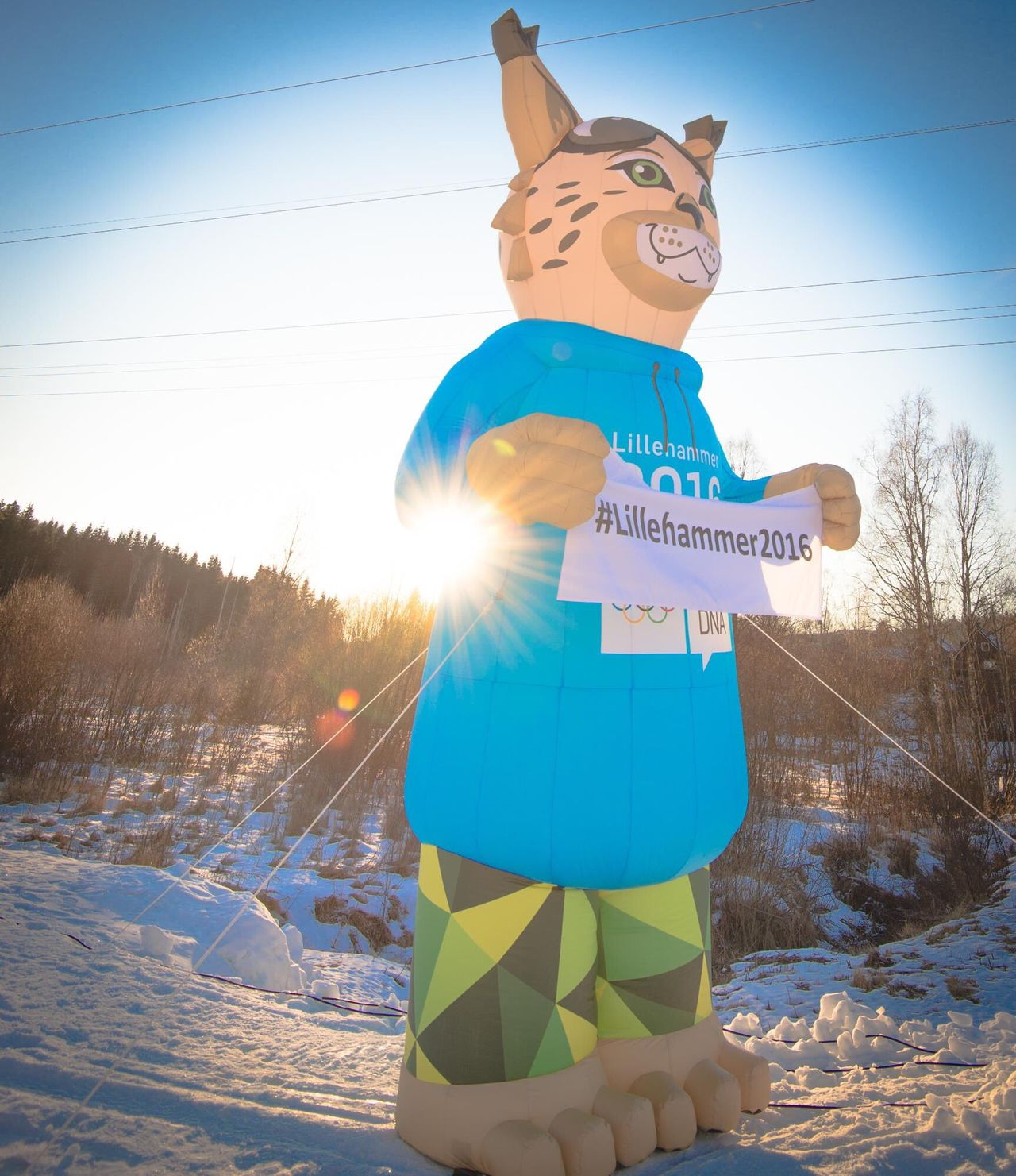 Showcase: February Yogdna Oslo