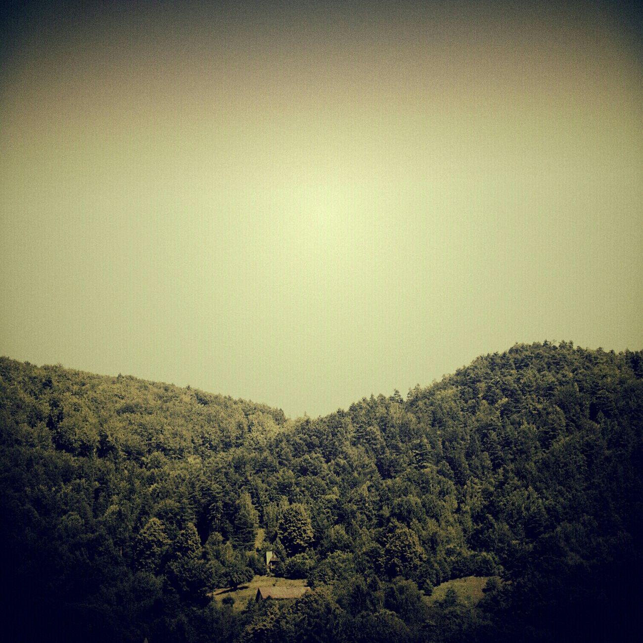 summer's gone | walden. poland. summer 2o13. | to da Lima Eye4photography  Nature_collection Landscape_Collection EyeEm Best Shots