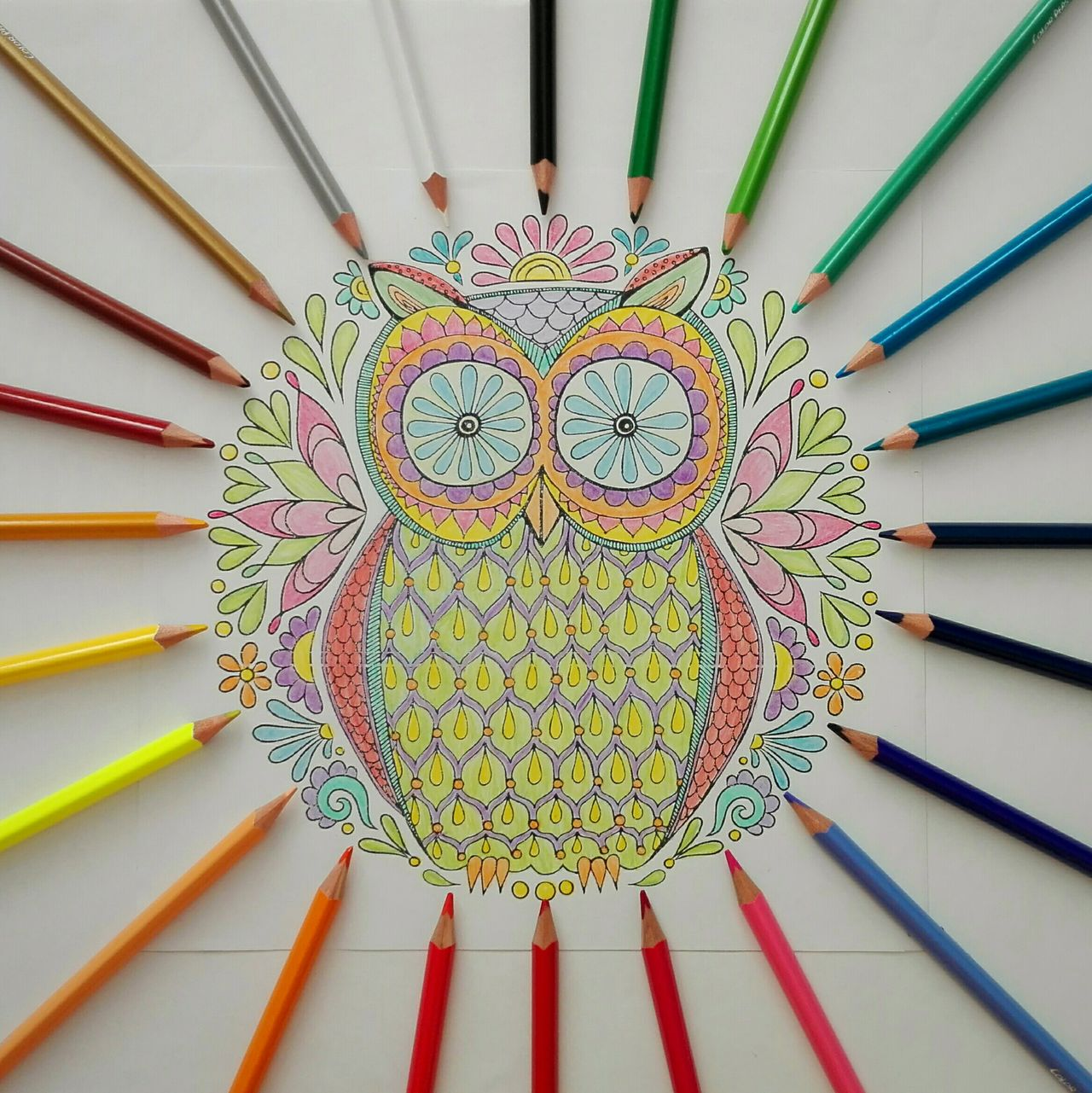 Coloring my life. The Color Of School Colour Of Life Colors Colorsplash Color Explosion Coloring Colored Colorful Colorful Life Colored Pencil Adult Coloring Book Coloring Book Coloringpage Coloring Time Coloring The World Coloring Page Coloring Life Coloringforadults Coloring Outside The Lines Coloring Pencils Coloringbookforadults