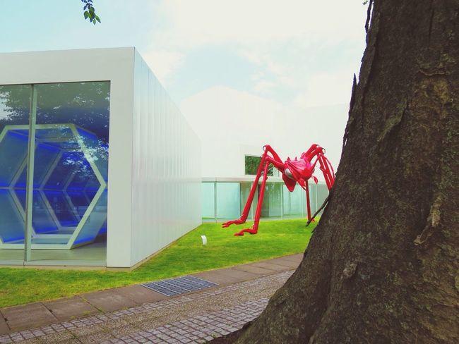 Ant Red BIG Museum Towada