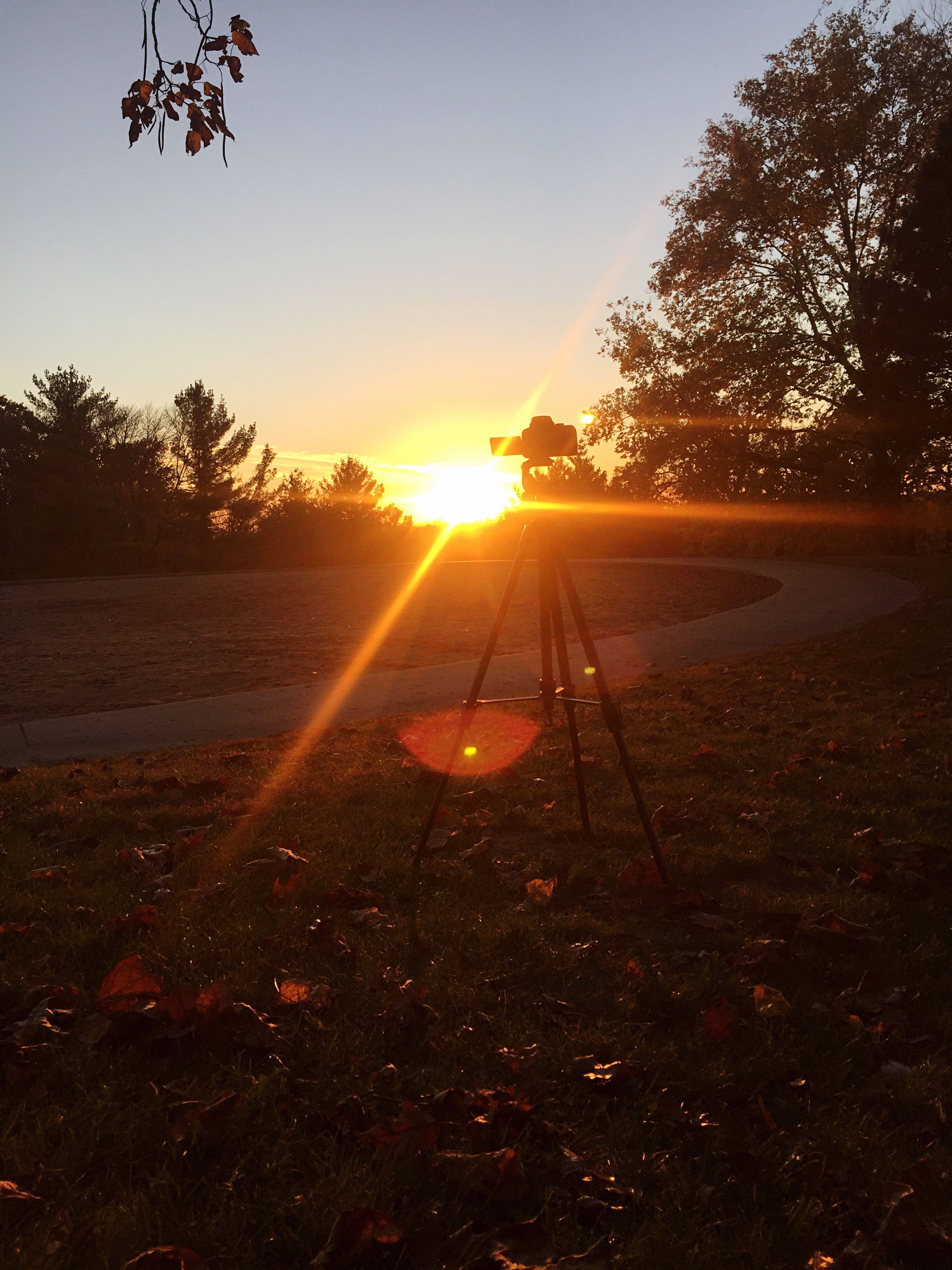 Sunset Sunlight Sun Lens Flare Tree Nature Sunbeam Beauty In Nature Scenics Tranquility Tranquil Scene Sky Outdoors No People Sunrise Day Calm Taking Photos Time To Reflect taking pics of me taking pics ...... interval shots