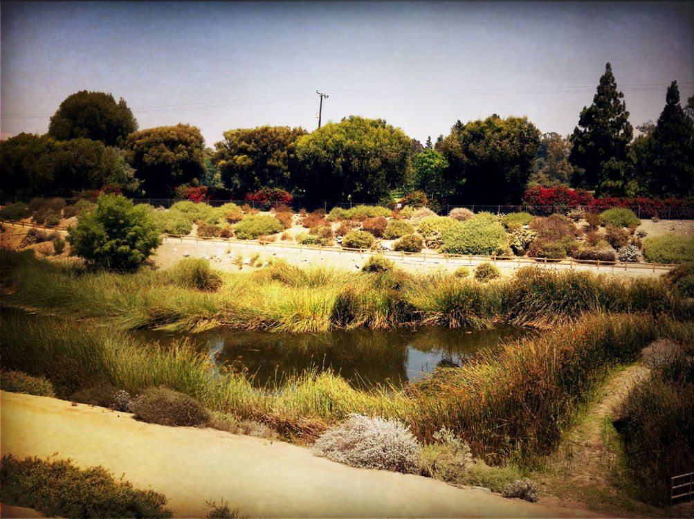 LA River Bike Path at Dominguez Gap Wetlands by Noah