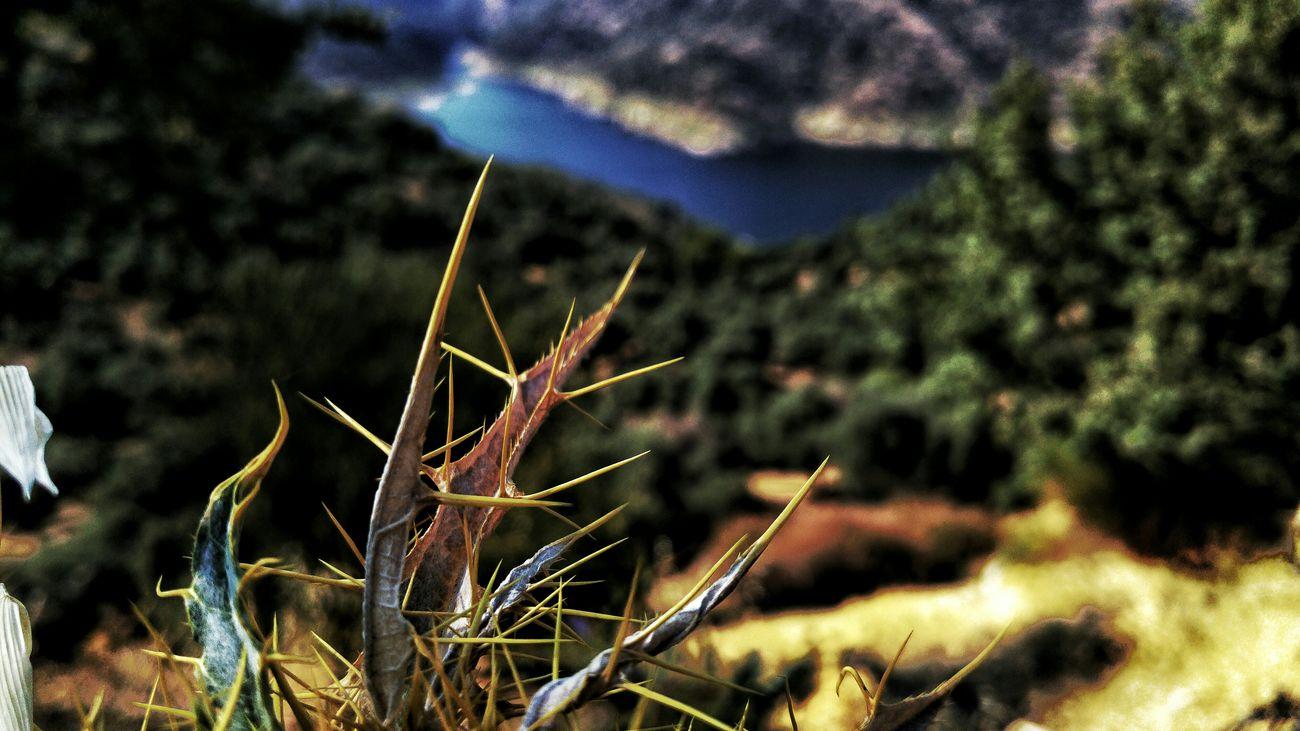 Lgg4photography Aydin/Turkey Blue Sky Doğa Travel Sky And SeaYaylavak