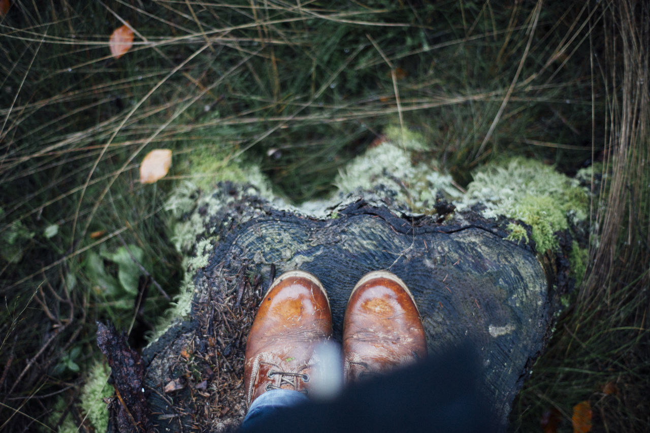 It's that time of the year again. Autum Autumn Autumn Colors Close-up Fall Beauty Fall Colors From My Point Of View Human Body Part Human Leg Low Section One Person Outdoors Personal Perspective Shoe Standing Tree Trunk Water Weather Wet Wet Shoes