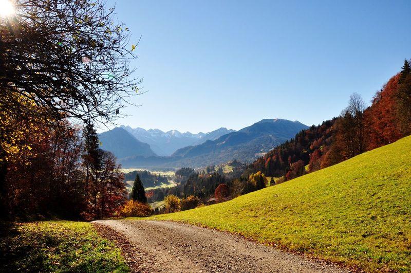 Autumn Autumn Colors Oberstdorf & Umgebung Allgäu Landscape