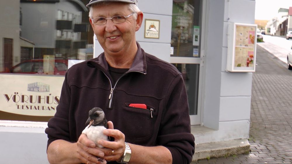 Bird Birds Day Eyeglasses  Iceland One Man Only One Person Portrait Puffin Puffins Smiling