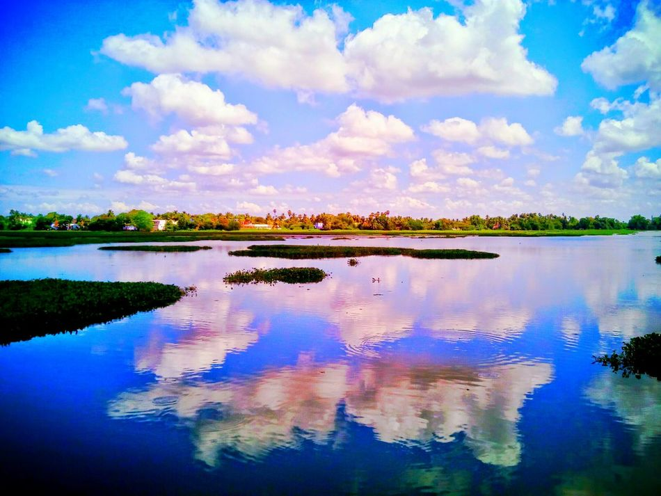 Picture Was Nainari Lake At Tirunelveli,India