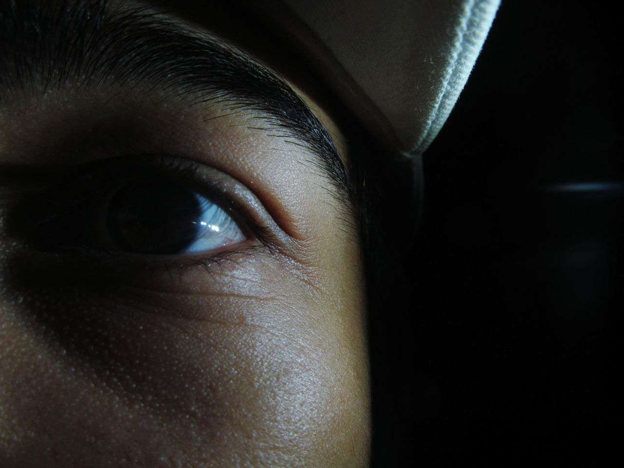human eye, one person, close-up, human body part, real people, looking at camera, portrait, eyesight, eyelash, eyeball, women, sensory perception, eyebrow, young women, young adult, day, indoors, adult, people