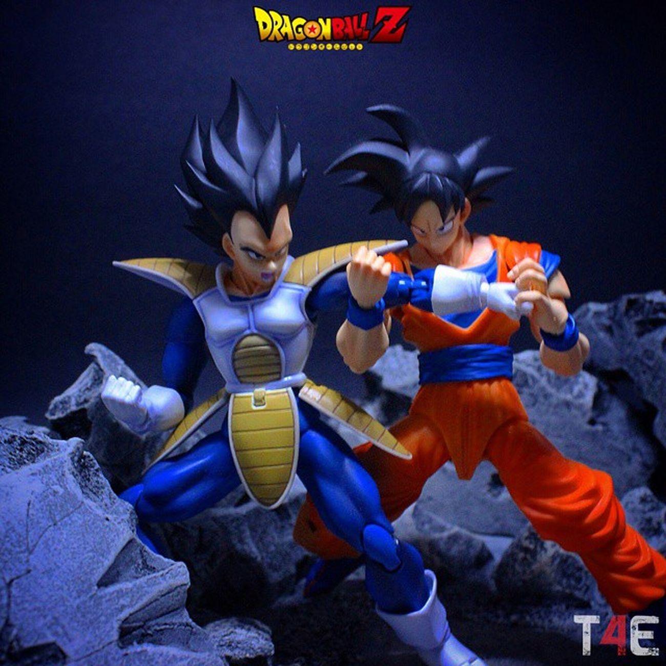 The battle begins! Goku vs Vegeta! Tcb_primal_fear