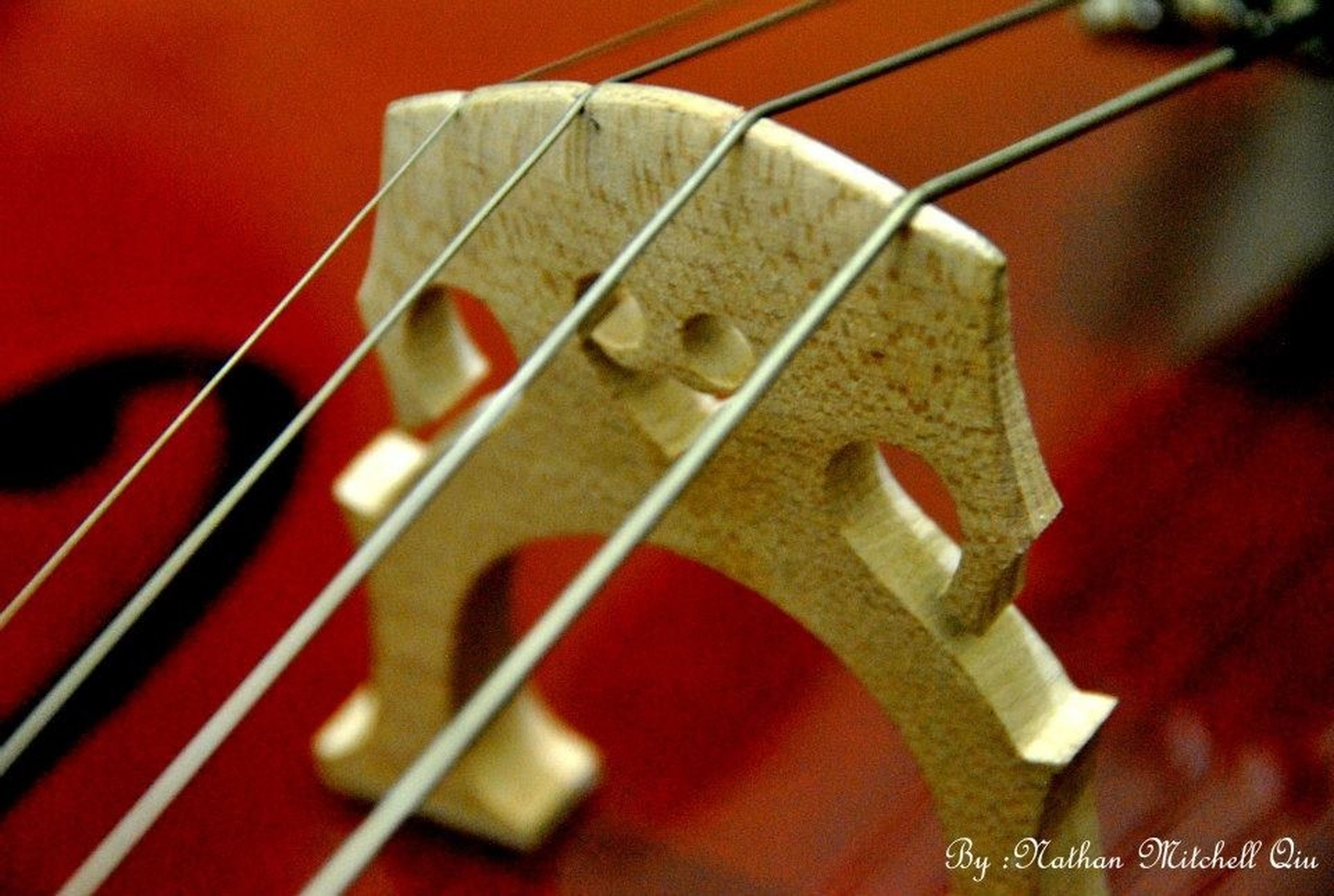 indoors, close-up, red, focus on foreground, still life, selective focus, metal, no people, high angle view, food and drink, table, part of, musical instrument, arts culture and entertainment, music, guitar, plastic, container, cropped, day