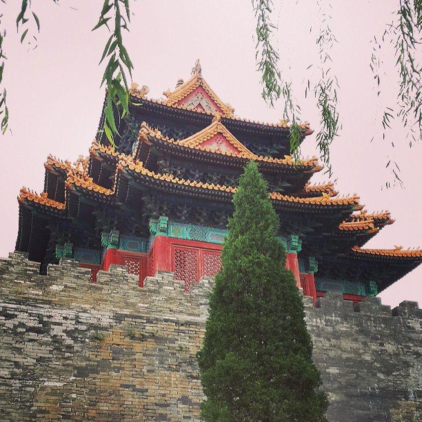Beiging пагода запретныйгород