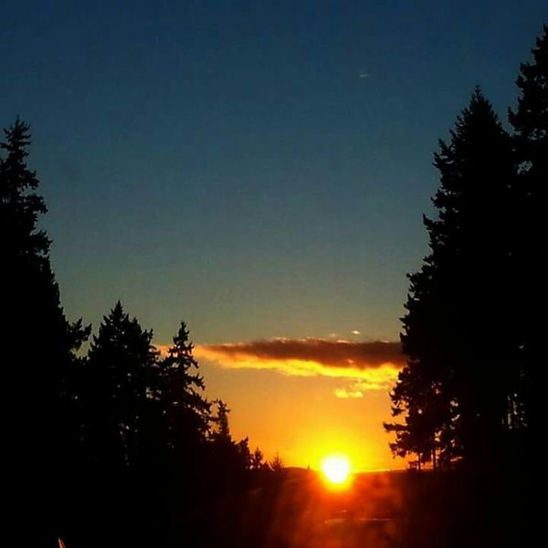 Epic Shot Photography Northwestsunsets Skylover Nature Photography EyeEm Best Shots - Trees Sunsets Eyeemsunset Trees_collection