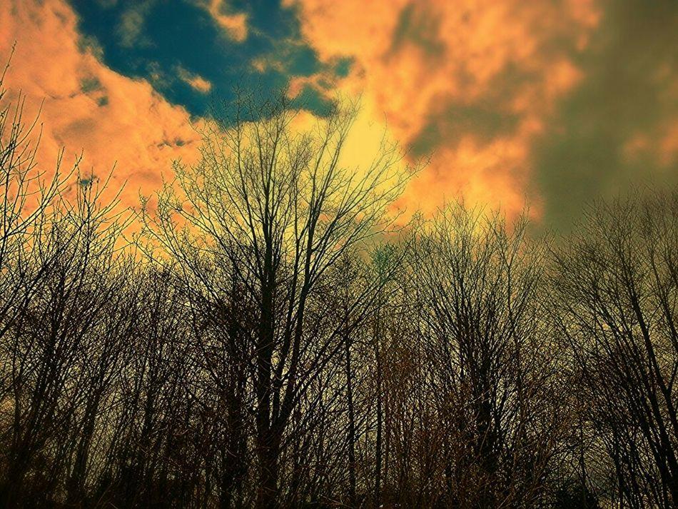 Magic light... Nature Sky Mystical Nature_collection