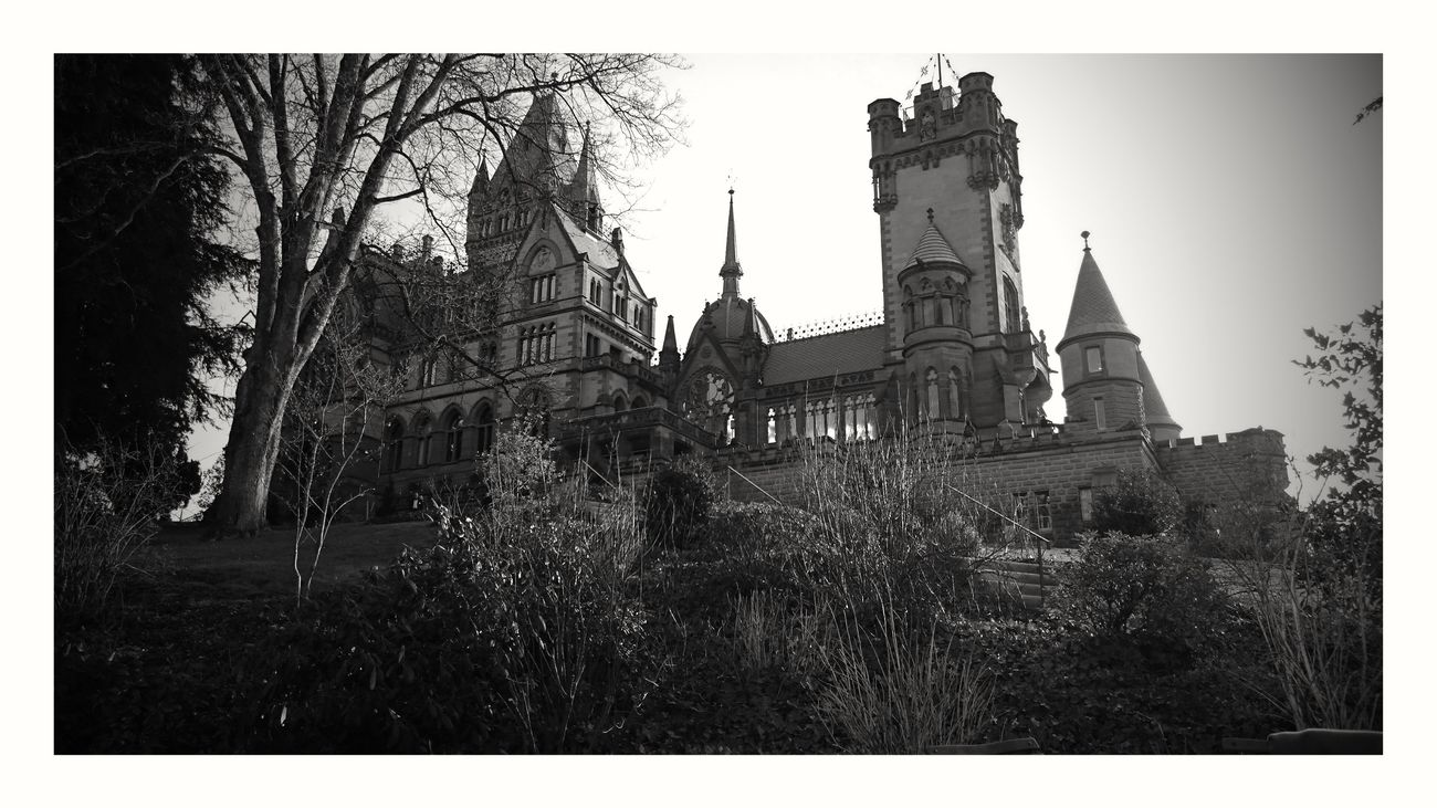 Drachenschloss,Bonn Built Structure Architecture History Outdoors Tree Cultures Day Picture Of The Day Schlösser Picofday Follower Fotooftheday Black&white Castle No People Building Exterior