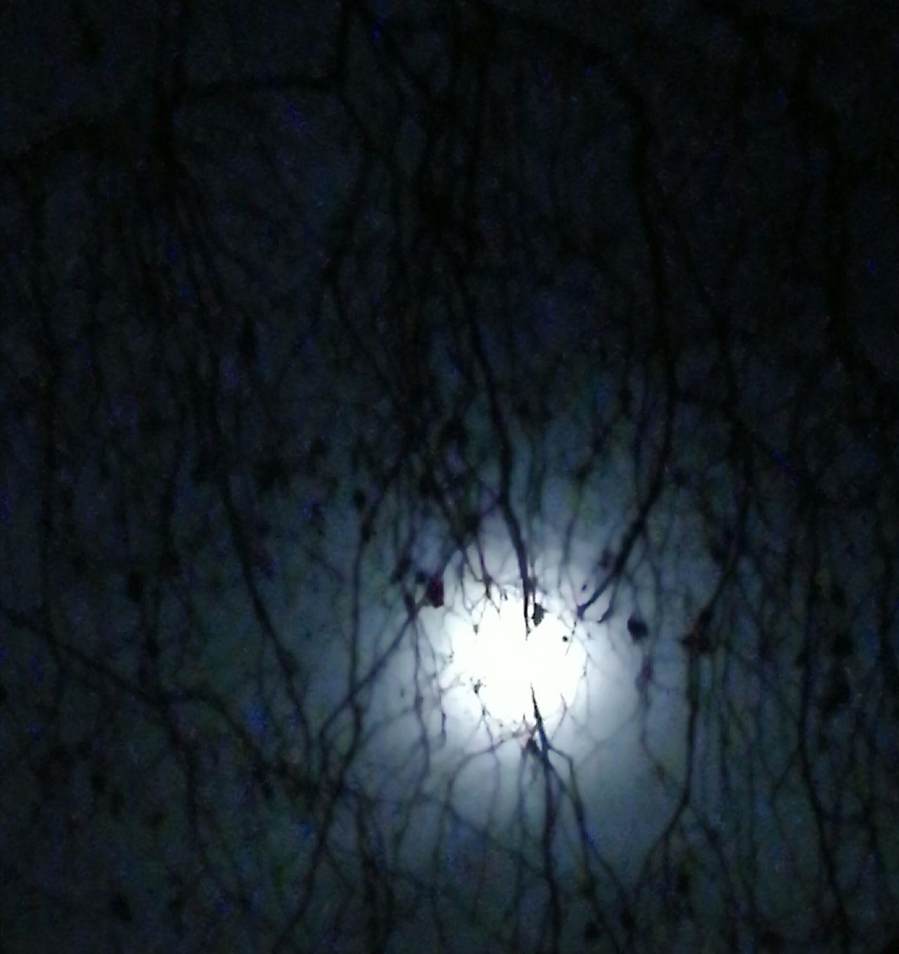 Nature Sky Night Outdoors Moonlight No People Taking Photos At Home LONDON❤ London London London!!! Illuminated Life Moon Tranquility Shiny Fantasy Dreaming Moon_lovers Nighttime Beauty In Nature Enjoying Life Moonlight ♥ Moonshot Moonbeauty Moon_awards City