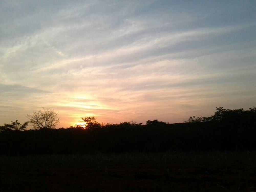 Sunset PôrDoSol. Sunset And Clouds  SunsetBeauty Pôrdosolmaravilhoso Sun Sol árvores Trees