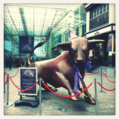 the Bull Ring Bull all dressed up for the bull ring's Tenth Birthday