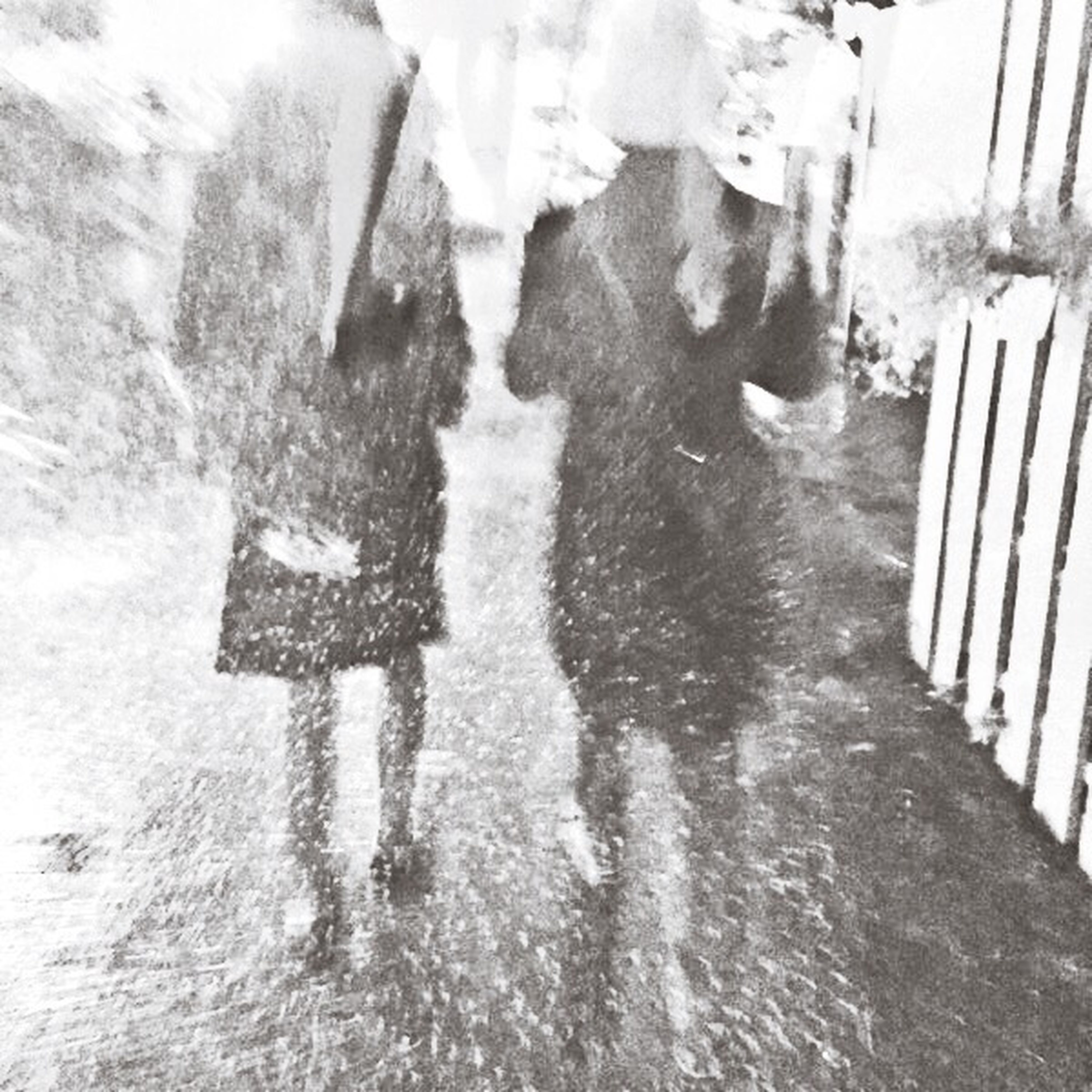 Walking Couple Rainning Good Chou