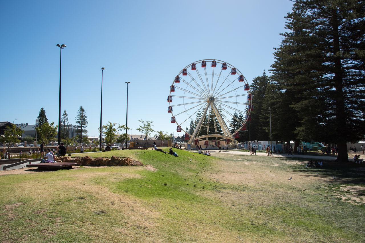 Youth Esplanade Plaza and ferris wheel ride with tall norfolk pines in downtown Fremantle, Western Australia. Amusement Park Ride City Ferris Wheel Fremantle  Fun Landscape Leisure Activity Lifestyle Norfolk Pines Observation Wheel Plaza Real People Recreational Pursuit Rotating Skatepark Spinning Sunny Tourism Tourist Travel Destinations Tree Urban Western Australia Youth Culture Youth Esplanade