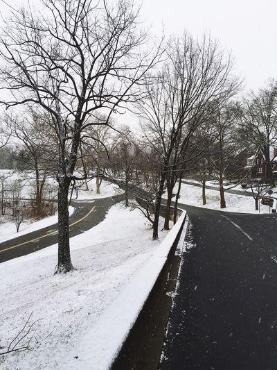 Winter Wonderland Maze Street Photography Snow