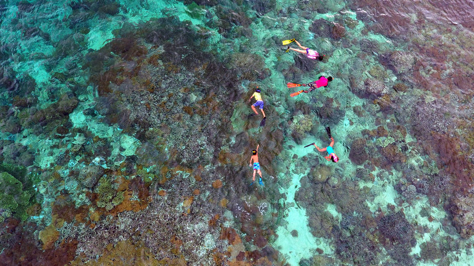 Adult Adults Only Aerial Shot Aerial View Blue Colorful Day Dronephotography High Angle View Outdoors People Real People Snorkeling Swimming Togetherness A Bird's Eye View Flying High Water Islands