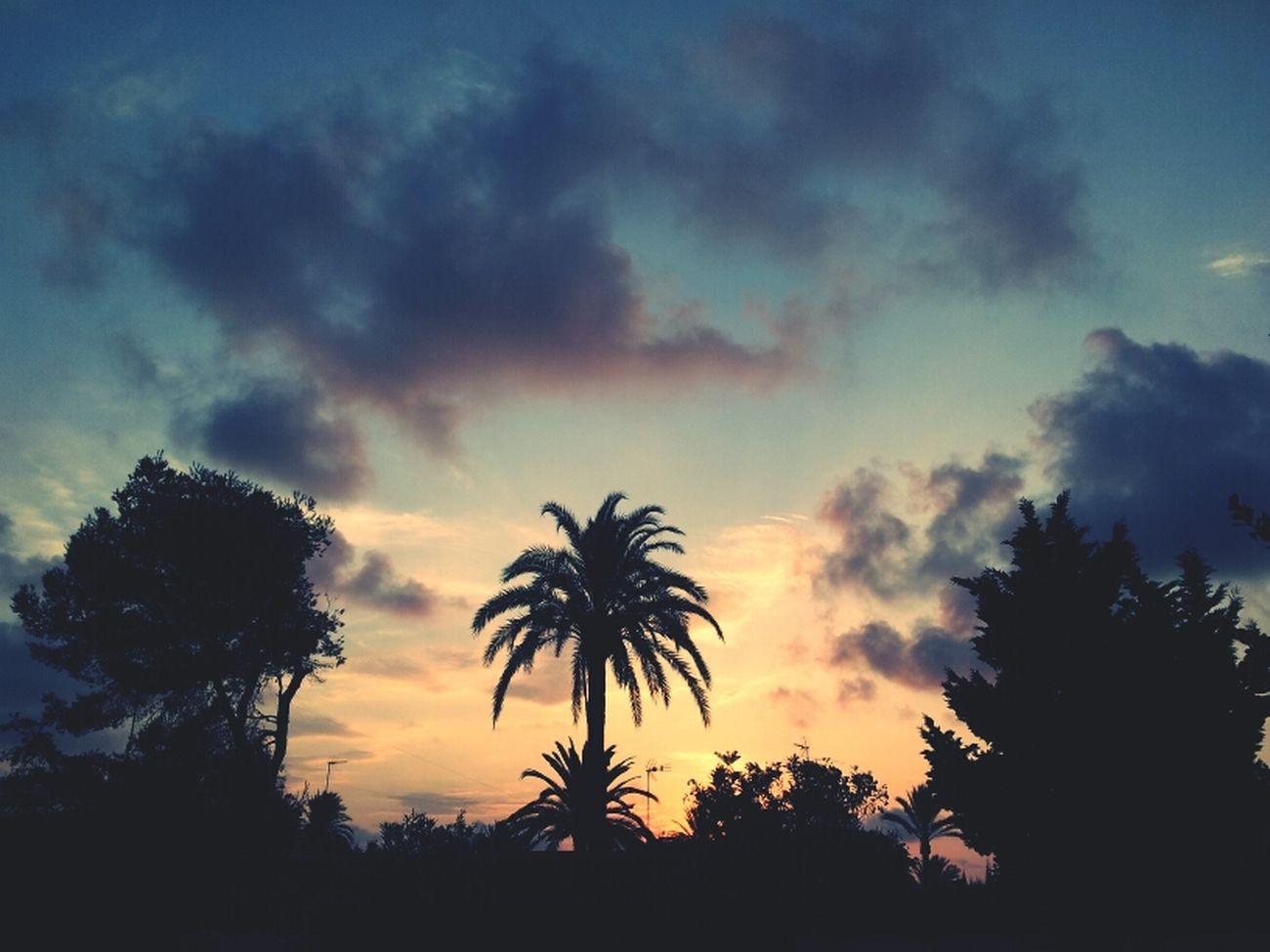 Summer Beach Sunrise