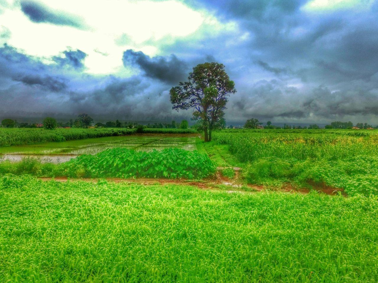 Railroad Track Rainy Days☔ Cloudsporn Dehardun Train Landscape_photography