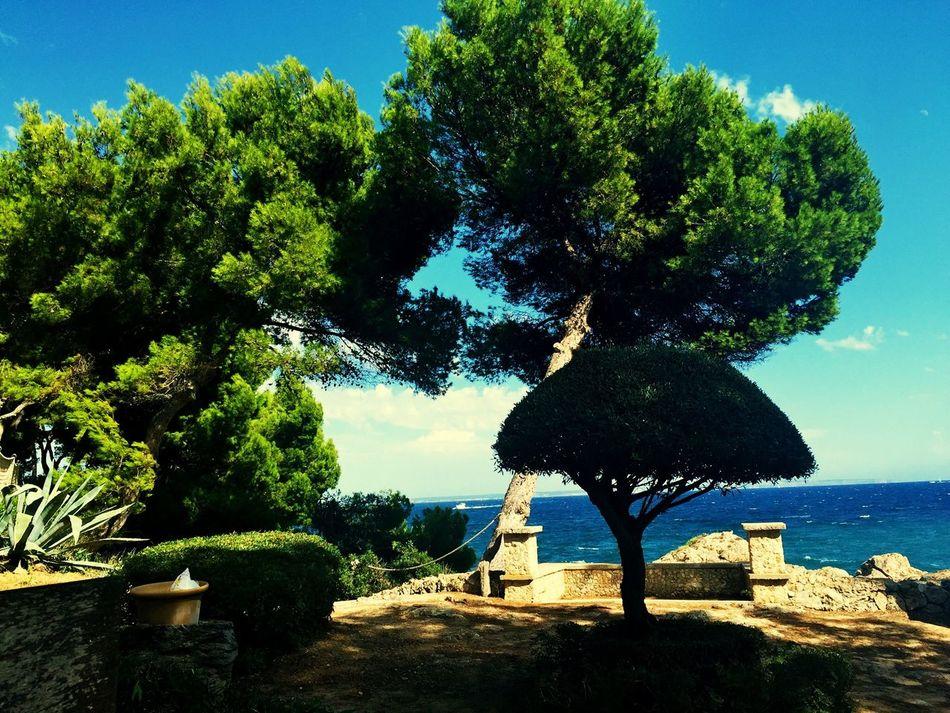 Checking In Hello World Good Times Sky Mallorca