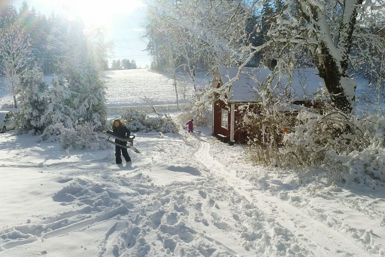 Cold Temperature Snow Day Outdoors Nature Winter Tree Kids In Snow Kids Playing In The Snow Red Cabin