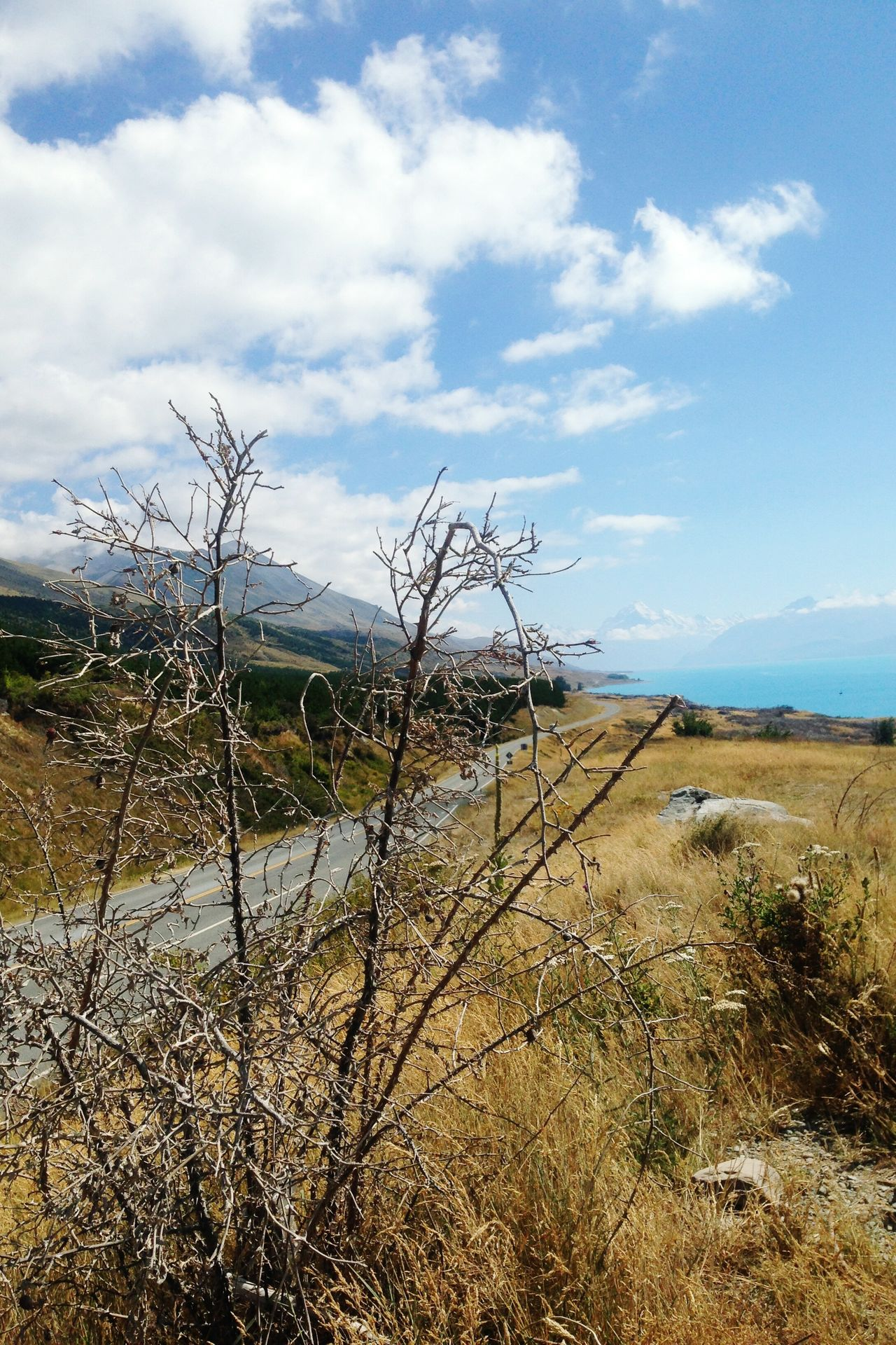 Breathtaking View Scenery Blue Sky Countryside Magnificent Mountains Grass Plants Rural Ben Ohau, New Zealand.