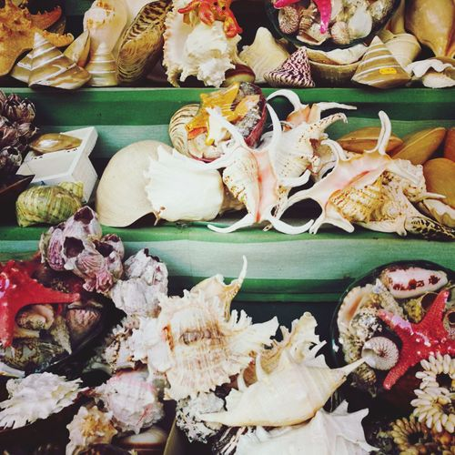 EyeEm Selects Retail  No People Market Food And Drink Seafood Food Freshness Day Close-up Nature Summer Sea Beach Check This Out Animal Shapes Seashell Gallipoli
