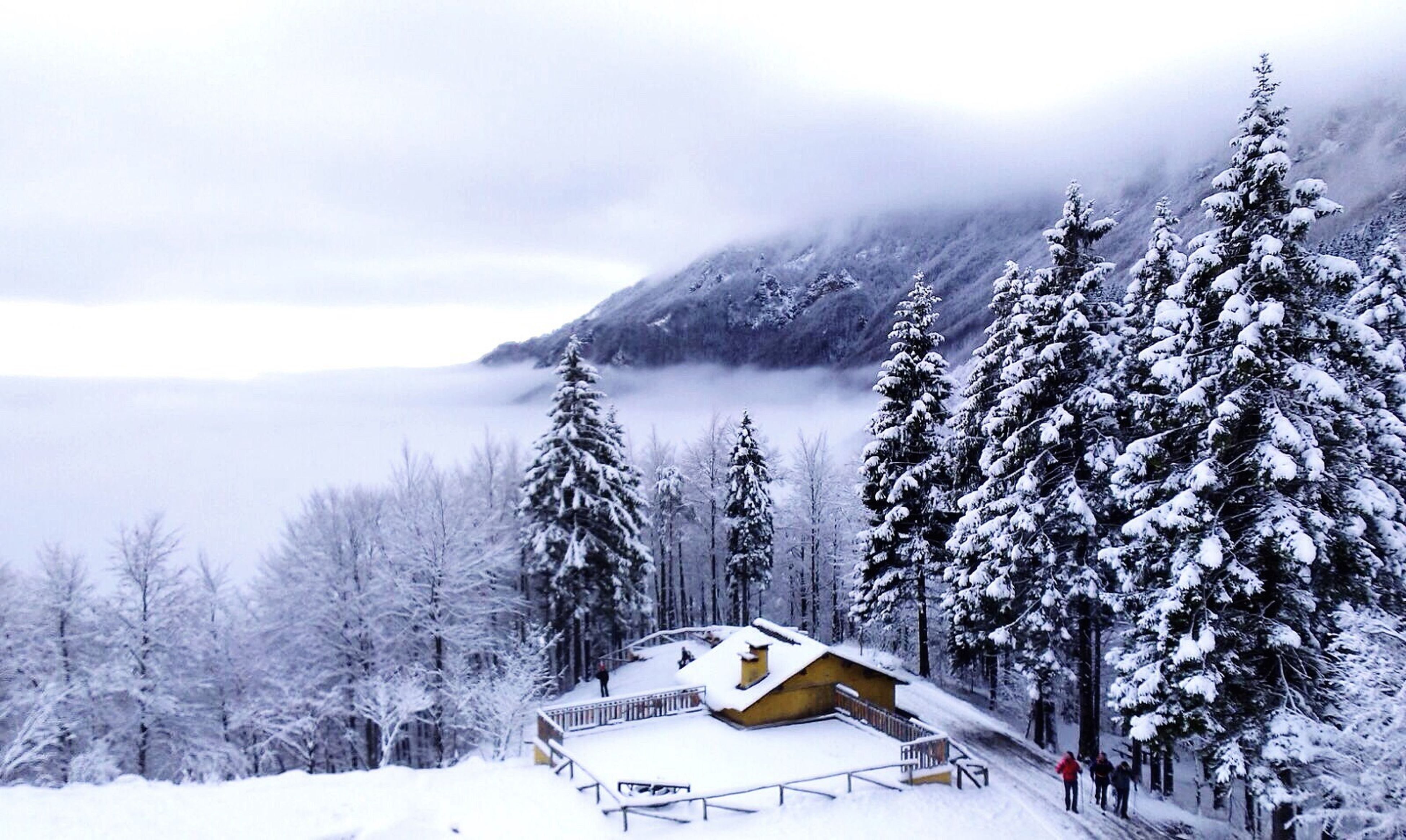 snow, winter, cold temperature, season, weather, covering, tranquil scene, landscape, snowcapped mountain, tranquility, scenics, beauty in nature, mountain, white color, tree, nature, sky, covered, frozen, snow covered