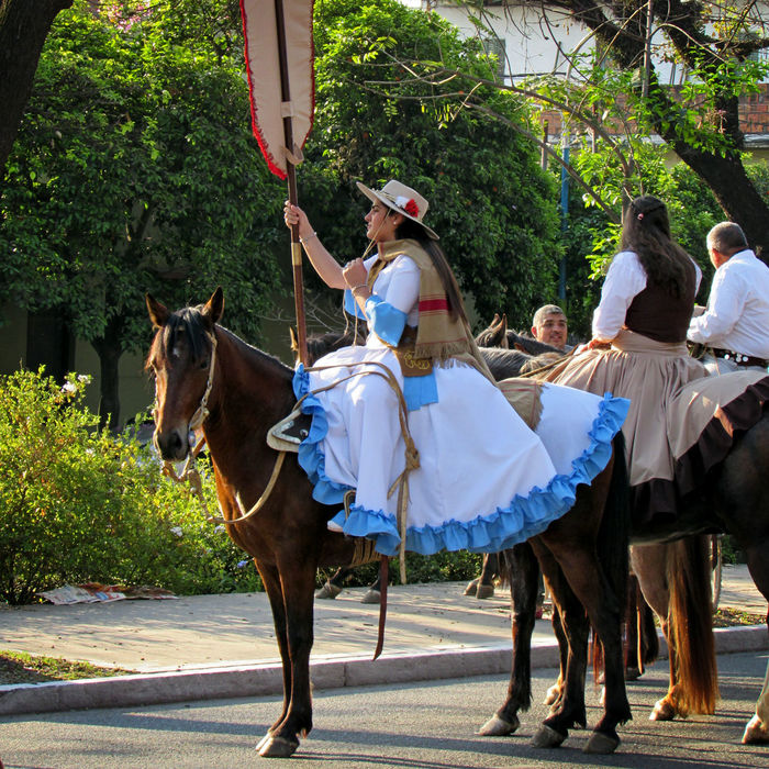 Domestic Animals Horse Riding Horseback Riding Leisure Activity Outdoors Folklore Argentina Tucumán  Typical Day Typical Fest White Dress